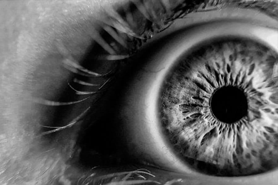 Los ojos a través de los que vemos y creamos la realidad: los modelos mentales